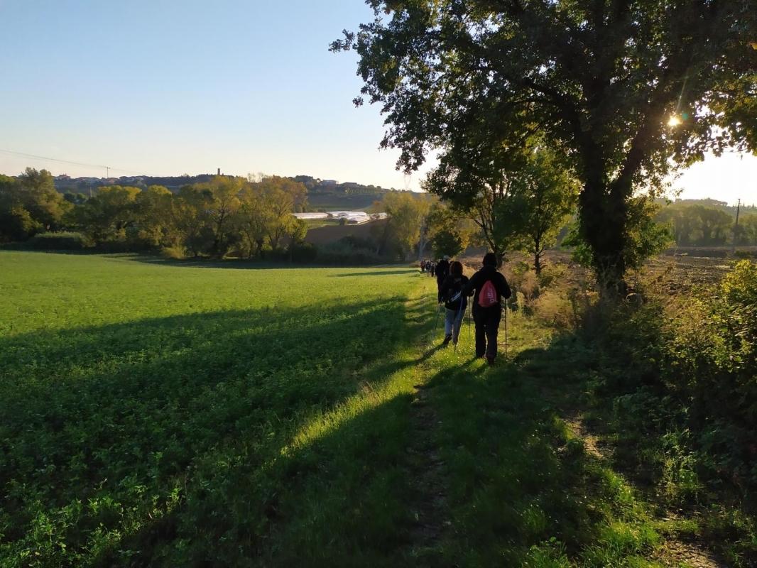 Notte Celeste a Riccione Terme, Cammina e Respira l'entroterra