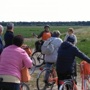 Escursione in bici Volano-Mesola-Volano