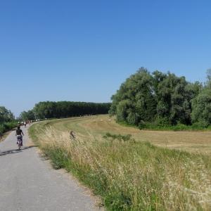 Scopri il delta del Po in Bicicletta