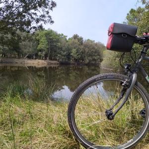 In bici alla foce del Po di Volano 100% Natura