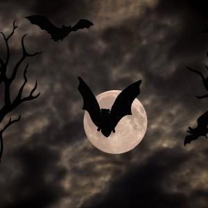 Halloween nella palude maledetta