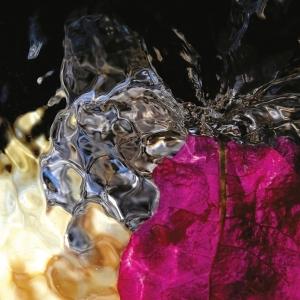 Mostra alla Palazzina Marfisa d'Este - Claudio Koporossy. Invisibilia