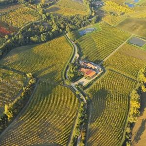Visita aziendale con degustazione vini Tre Monti