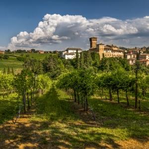 Andar per collina a Castelvetro (Mo) Trekking e eBike Tour
