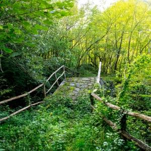In cammino sulla Via Romea Germanica Imperiale