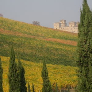 Bianca pellegrina e la Via di Linari - tour guidato a Torrechiara