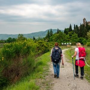 I love cammini - camminando fra santi e beati nella città dei cardinali