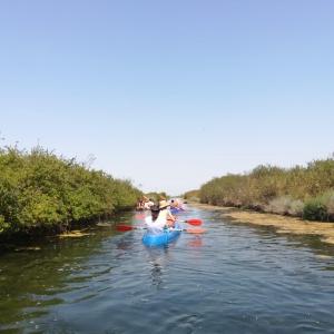 In canoa alla scoperta della Salina di Cervia