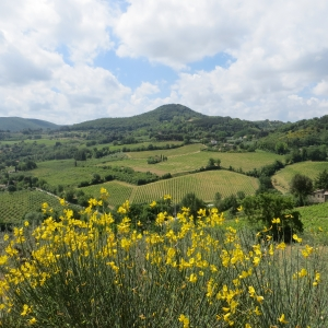 Via Romea da Ravenna ad Arezzo
